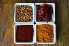 Kryddor i vit disk Arkivfoton