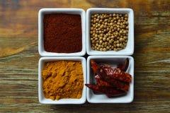 Kryddor i vit disk Arkivfoto