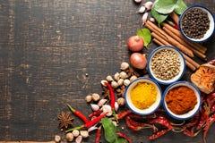 Kryddor med ingredienser på mörk bakgrund sunt eller laga mat c Royaltyfri Foto