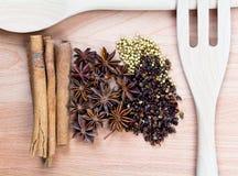 Kryddor med redskapet på wood bakgrund Royaltyfri Fotografi