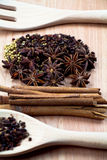 Kryddor med redskapet på wood bakgrund Royaltyfria Foton