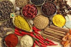 Kryddor och örtar royaltyfria foton