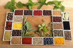Kryddor och örtar Royaltyfri Fotografi