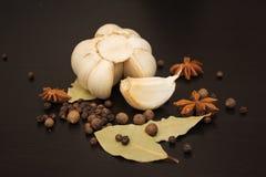 Kryddor och örtar Mat- och kokkonstingredienser Fotografering för Bildbyråer
