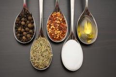 Kryddor och örtar Mat- och kokkonstingredienser Arkivbild