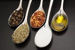 Kryddor och örtar Mat- och kokkonstingredienser Royaltyfria Bilder