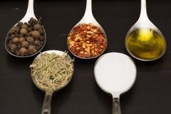 Kryddor och örtar Mat- och kokkonstingredienser Arkivbilder