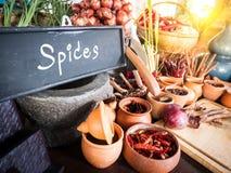 Kryddor och örter i liten krus Mat- och kokkonstingredienser Royaltyfri Bild