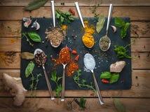 Kryddor och örter i skedar mörk bakgrund, bästa sikt arkivfoto