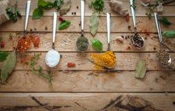 Kryddor och örter i skedar på träbakgrund arkivbilder