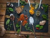 Kryddor och örter i skedmörkerbakgrund arkivbild