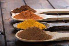 Kryddor och örter i wood skedar över träbakgrund Arkivfoton