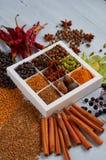 Kryddor och örter på det gråa köksbordet: stjärnaanis, doftande peppar, kanel, muskotnöt, lagerbladar, nära övre för paprika Royaltyfri Bild