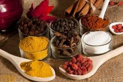 Kryddor och anstrykningar Arkivfoto