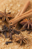 Kryddor och farin Fotografering för Bildbyråer
