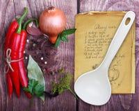 Kryddor och gammal receptbok Arkivfoto