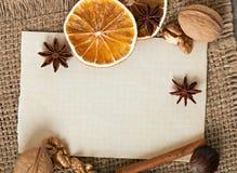 Kryddor och papper Royaltyfria Bilder