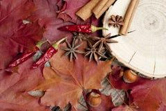 Kryddor och sidor på trätabellen Arkivfoto