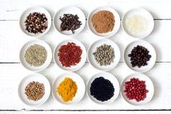 Kryddor och torkade grönsaker Royaltyfria Bilder