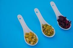 Kryddor på blå bakgrund för köket royaltyfria foton