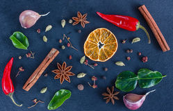 Kryddor på en mörk bakgrund Arkivfoto