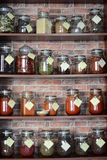 Kryddor på hyllor Fotografering för Bildbyråer