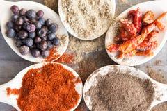 Kryddor på skedar Arkivbilder