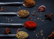 Kryddor på skedar Arkivfoto