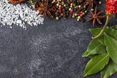 Kryddor på stensvartbakgrunden Smaktillsatser på en mörk tabell royaltyfria foton