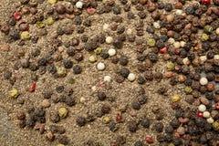 Kryddor på stensvartbakgrunden Smaktillsatser på en mörk tabell arkivfoton