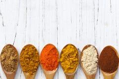 Kryddor på träskedar Arkivbilder