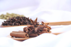 Kryddor på vitbakgrund Royaltyfri Foto