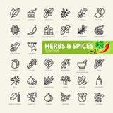 Kryddor, smaktillsatser och örter - minsta tunn linje rengöringsduksymbolsuppsättning Översiktssymbolssamling royaltyfri illustrationer