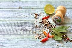 Kryddor som är salta, limefrukt på en tabell med utrymme Royaltyfri Fotografi
