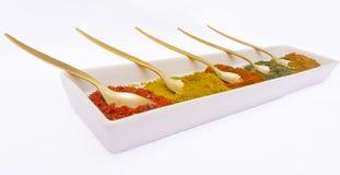 kryddor vii Royaltyfria Bilder