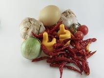 Kryddorna och grönsakerna på vit bakgrund Royaltyfri Foto