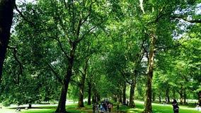 Kryjówka Parkowy Londyn Zdjęcie Royalty Free
