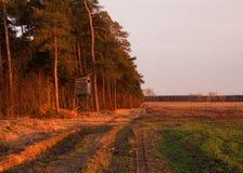 kryjówki blisko nastroszony drewno Zdjęcie Stock