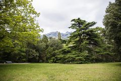 Krym, Yalta 2018 Vorontsov park. Vorontsov Park is located in the Crimea in the city of Yalta. Conquering its large territory and unusually beautiful vegetation Royalty Free Stock Photo
