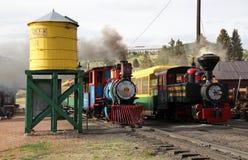 Krymplingliten vik och Victor Narrow Gauge Railroad arkivfoton