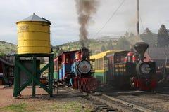Krymplingliten vik och Victor Narrow Gauge Railroad fotografering för bildbyråer