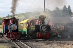Krymplingliten vik och Victor Narrow Gauge Railroad royaltyfri fotografi
