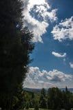 Krynica Gorska Gora Parkowa - colina del parque Imagenes de archivo