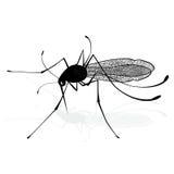 Kryp en realistisk knottmygga för eps-mygga för close 8 silhouette upp vektor Mygga på vit bakgrund Vektorn skissar illustratione stock illustrationer