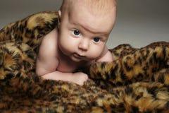 Krypande nyfött behandla som ett barn roligt barn little Arkivfoton