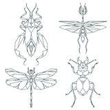 Krypsymboler, vektoruppsättning Abstrakt triangulär stil bönsyrsa gräshoppa, myra, vivelskalbagge Royaltyfria Foton