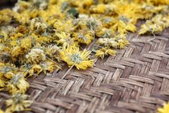 Krysantemumte arkivfoto