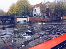 Kryssa omkring den storslagna kanalen av Amsterdam Arkivfoton