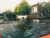 Kryssa omkring den storslagna kanalen av Amsterdam Royaltyfri Foto