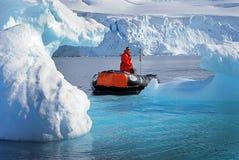 Kryssa omkring för isberg Royaltyfri Foto